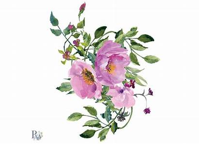 Rose Clipart Wild Pink Roses Watercolor Clip