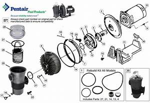 Pentair Challenger Replacement Pool Pump Parts