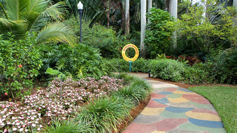 sunken gardens st pete sunken gardens in st petersburg florida expedia