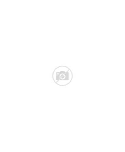 Van Gogh Portrait Self Digital Gifs Orsay