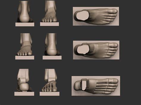 foot reference  model  printable stl cgtradercom