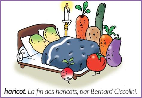 cuisine de bernard tiramisu encyclopédie larousse en ligne la fin des haricots par