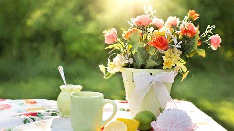 cuisine japonaise image libre petit déjeuner thé soleil table matin