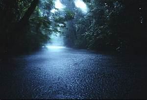 Beauty Of World: Beautiful Rain HD Wallpapers
