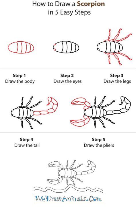scorpion directed draw   desert habitat unit