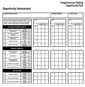 Sample account plan template 9 free documents in pdf word for Target account selling template