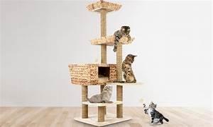 Arbre À Chat Pour Gros Chat : arbre a chat groupon ~ Nature-et-papiers.com Idées de Décoration