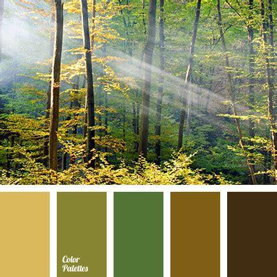 Colour Of Forest  Color Palette Ideas