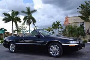 Cadillac Eldorado Cabriolet : 1995 cadillac eldorado convertible 176971 ~ Medecine-chirurgie-esthetiques.com Avis de Voitures