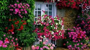 Farm House Garden wallpaper