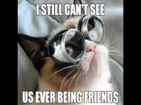 Grumpy Cat Meme Clean - top 25 best cat memes clean ideas on pinterest funny kittens creepy face meme and creepy meme