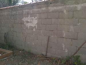 Mur En Moellon : enduit ext rierur sur mur en moellon ~ Dallasstarsshop.com Idées de Décoration