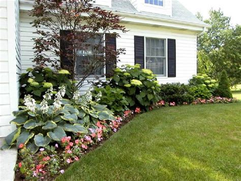 plants for front garden ideas perfect landscaping ideas for front of ranch style house house style design