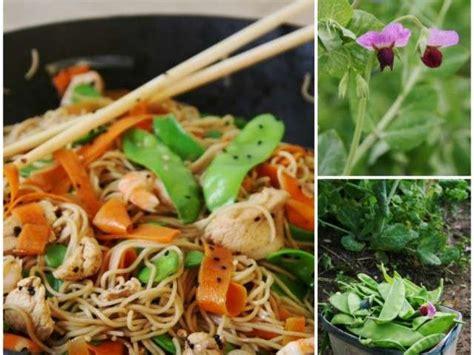 cuisine chinoise au wok les meilleures recettes de wok et carottes