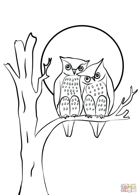 owls couple  love coloring page  printable