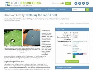 Exploring The Lotus Effect Activities  U0026 Project For 10th