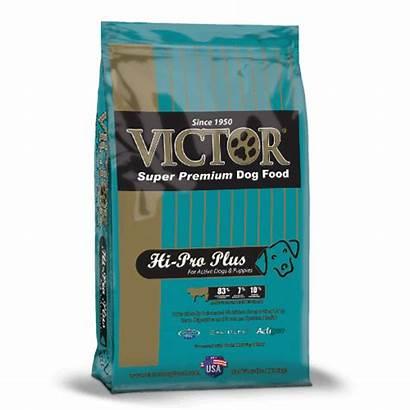 Victor Dog Puppy Hi Feeding Schedule Teal