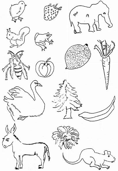 Living Drawings Examples Copy Er Diagram Scientific