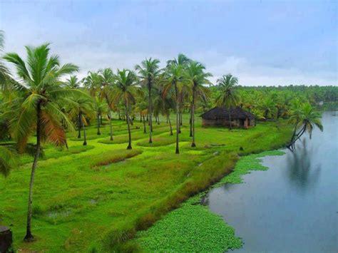 Natural Beauty Of Kerala #kerala #beauty- Pretty As An Oil