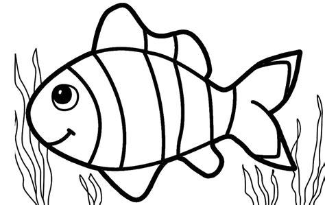 gambar mewarnai ikan hias belajarmewarnai info