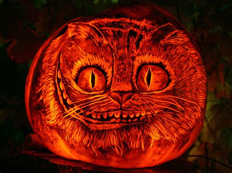 13 Killer Halloween Cat Pumpkins Mousebreath Magazine
