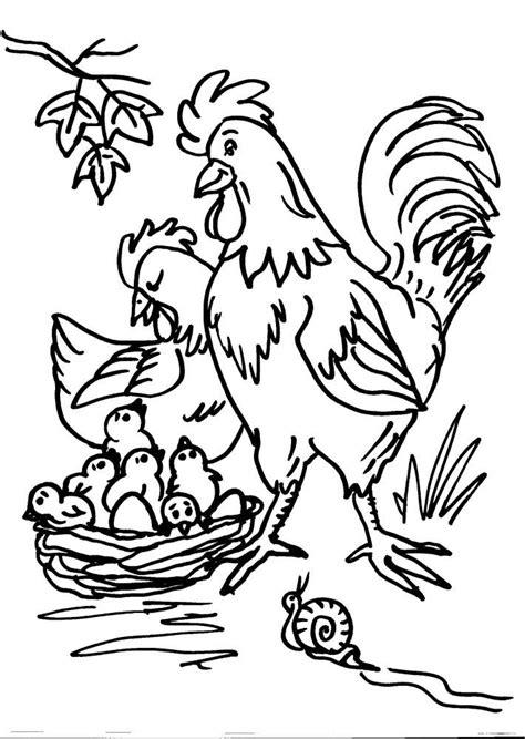 disegni da colorare di animali della fattoria disegni animali della fattoria da colorare gallo gallina