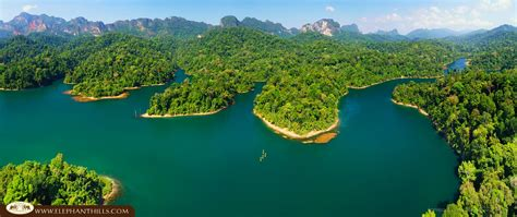 Nature Khao Sok National Park Thailand