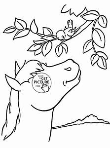 Horse and Bird coloring page for kids, animal coloring ...