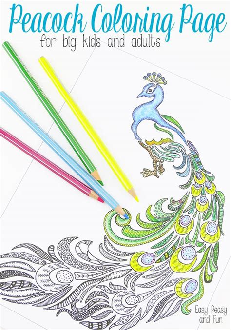 peacock coloring page  adults easy peasy  fun