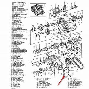 2000 Chevy Blazer Transfer Case Parts Diagram  2000  Free
