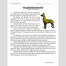 Reading Comprehension Worksheet  Housebreaking Herschel