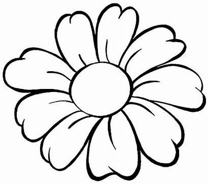 Colorir Flower Outline Simple Flores Pot Drawing