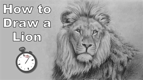 draw  lion  pencil time lapse drawing tutorial