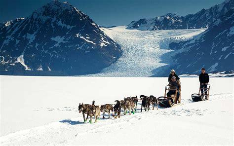 helicopter glacier dogsled  classic alaska