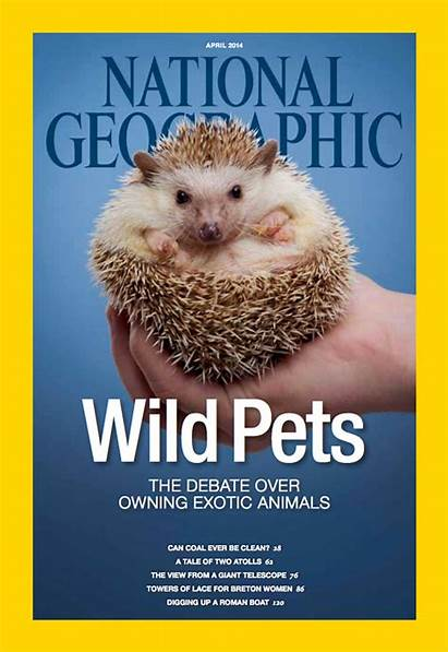 Geographic National April Magazine Covers Pets Exotic