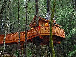 Cool Tree Houses Ideas as Your Precious Home Decorating ...