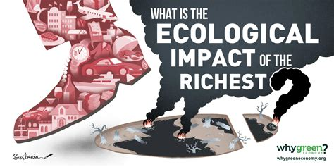 rbc wealth management why green economy ecological footprint of the richest