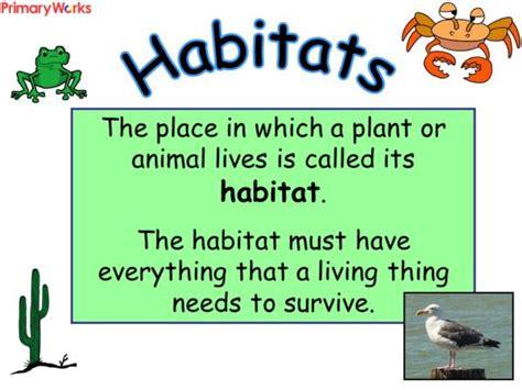 habitats powerpoint for ks2 ks1 children for a habitats