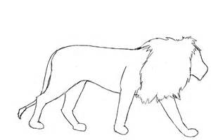 Lion Outline Drawing
