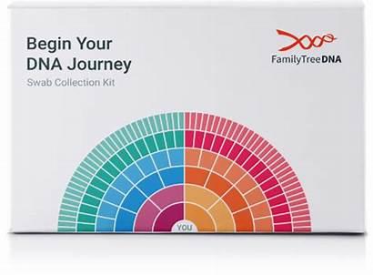 Dna Tree Familytreedna Journey Ftdna Ancestry History