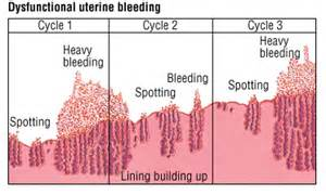 uterine wall shedding pregnancy 100 shedding uterine lining while why the