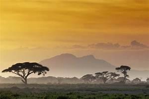 Kenyan, Safari, Samburu, Aberdare, Lake, Nakuru, U0026, Maasai