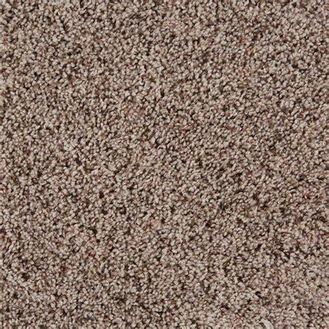 empire flooring and carpet sidekick series birch desert empire today
