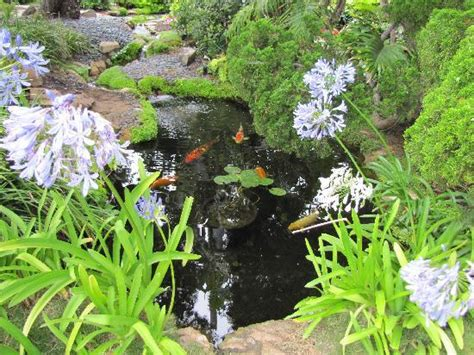 The Garden Fellowship by Self Realization Fellowship Hermitage Meditation Gardens