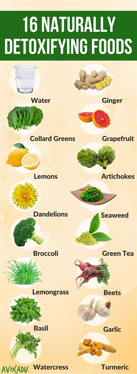 cuisine detox 16 foods that naturally detoxify your lose weight