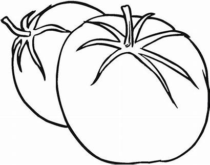 Tomato Vegetable Vegetables Tomatoes Coloring Drawing Pages