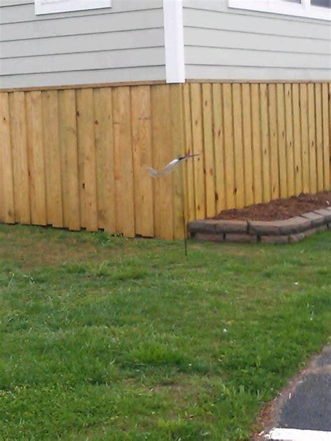 cedar rot question decks fencing contractor talk