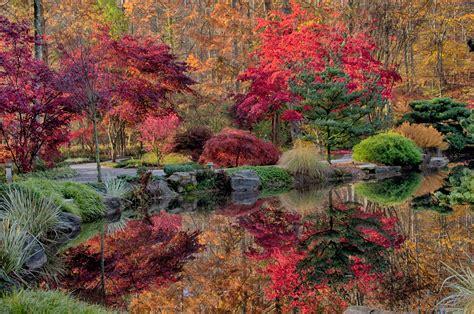 garden autumn october in the gardens gibbs gardens