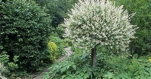 Wohnen Und Garten Abo : wohnidee abo amazing wohnidee abo with wohnidee abo ~ Lizthompson.info Haus und Dekorationen