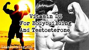 Difference Between Vitamin D3 V D2